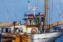 Feamp: nuovo bando regionale per promuovere e incentivare la competitività della filiera ittica