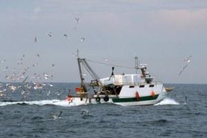 Avviso pubblico Misura 1.42 Valore aggiunto qualità dei prodotti e utilizzo delle catture indesiderate, annualità 2020