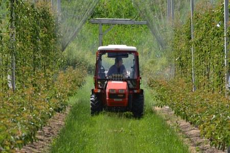 Aggiornamento proroghe di validità patentini fitosanitari e altre abilitazioni e attestati per un uso sostenibile dei prodotti fitosanitari
