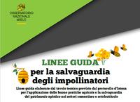 Salvaguardiamo api e impollinatori