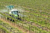 """Le nuove proroghe del DL """"Rilancio"""" per patentini fitosanitari e abilitazioni"""
