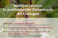 Le problematiche fitosanitarie del castagno: disponibili le presentazioni dei relatori