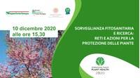 Sorveglianza fitosanitaria e ricerca: reti e azioni per la protezione delle piante