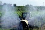 Fitofarmaci:con il nuovo Pan meno chimica, più ambiente