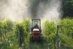 prodotti-fitosanitari