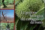 gestione biologica castagno