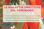 Le malattie infettive del pomodoro - 2012