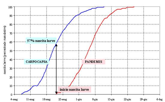 Il modello MRV-PANDEMIS