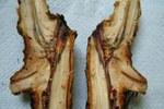 Infezione in corrispondenza di un taglio da potatura