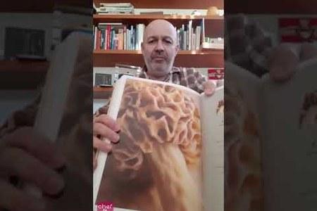 CheftoChef Emilia-Romagna Cuochi: le idee di Alberto Bettini