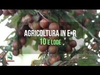 1/3 Agricoltura in ER 10 e lode