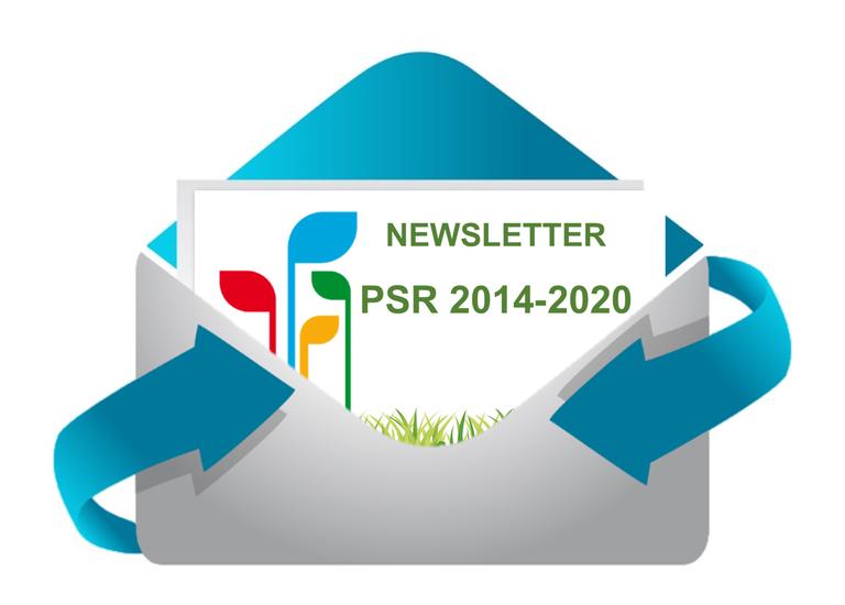 Newsletter PSR