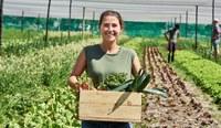 La trasformazione digitale nelle imprese agroalimentari all'epoca del Covid