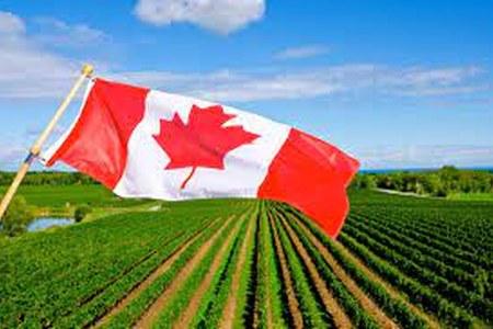 Opportunità di internazionalizzazione in Canada: Agrifood and Agtech