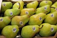 È nata UNApera per dare più qualità ai consumatori e più redditività ai produttori