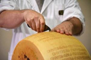 Bertinelli confermato presidente del Consorzio del Parmigiano Reggiano, le congratulazioni dell'assessore Mammi