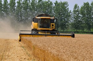 Al via il 7° Censimento generale dell'agricoltura