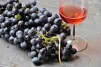 Legàmi di Vite, contratto di sviluppo green che coinvolge 12mila aziende vitivinicole regionali