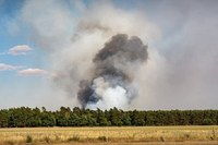Scatta la fase di attenzione per gli incendi boschivi su tutto il territorio regionale