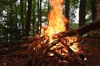 Vietato bruciare i residui vegetali agricoli e forestali nei Comuni di pianura