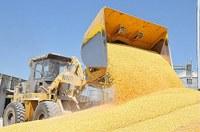 G20 agricoltura, l'impegno è raggiungere la sicurezza alimentare per tutti