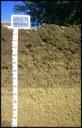 profilo suolo