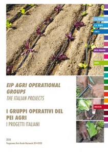 I Gruppi operativi del Pei Agri - I progetti italiani