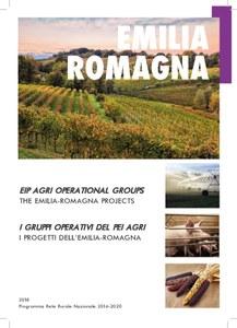 I progetti dell'Emilia-Romagna