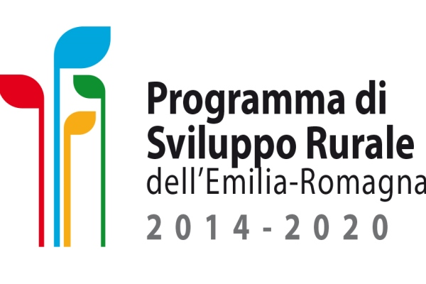 Logo del Psr