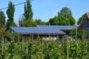Nuove risorse per l'energia verde