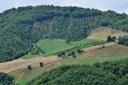 Creazione e sviluppo di agriturismi e fattorie didattiche