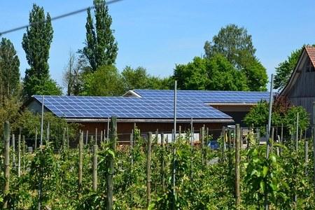 Le aziende agricole diversificano e puntano sulle energie alternative