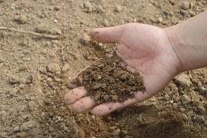 Console: è online il secondo questionario per gli agricoltori