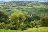 Zone montane e altre zone soggette a vincoli naturali significativi